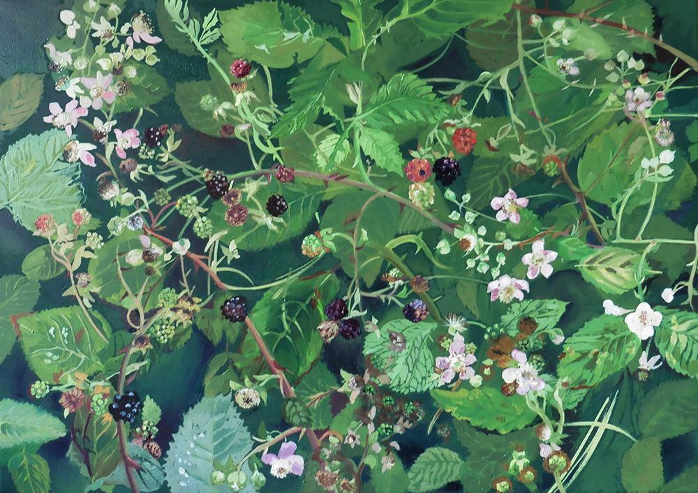 Blackberries-from-Marshs-Fields