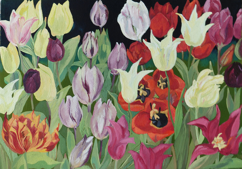 All grown in my garden in 2106, with the exception of the left hand lower corner tulip, this painting is a tribute to Ambrosius Boschaert